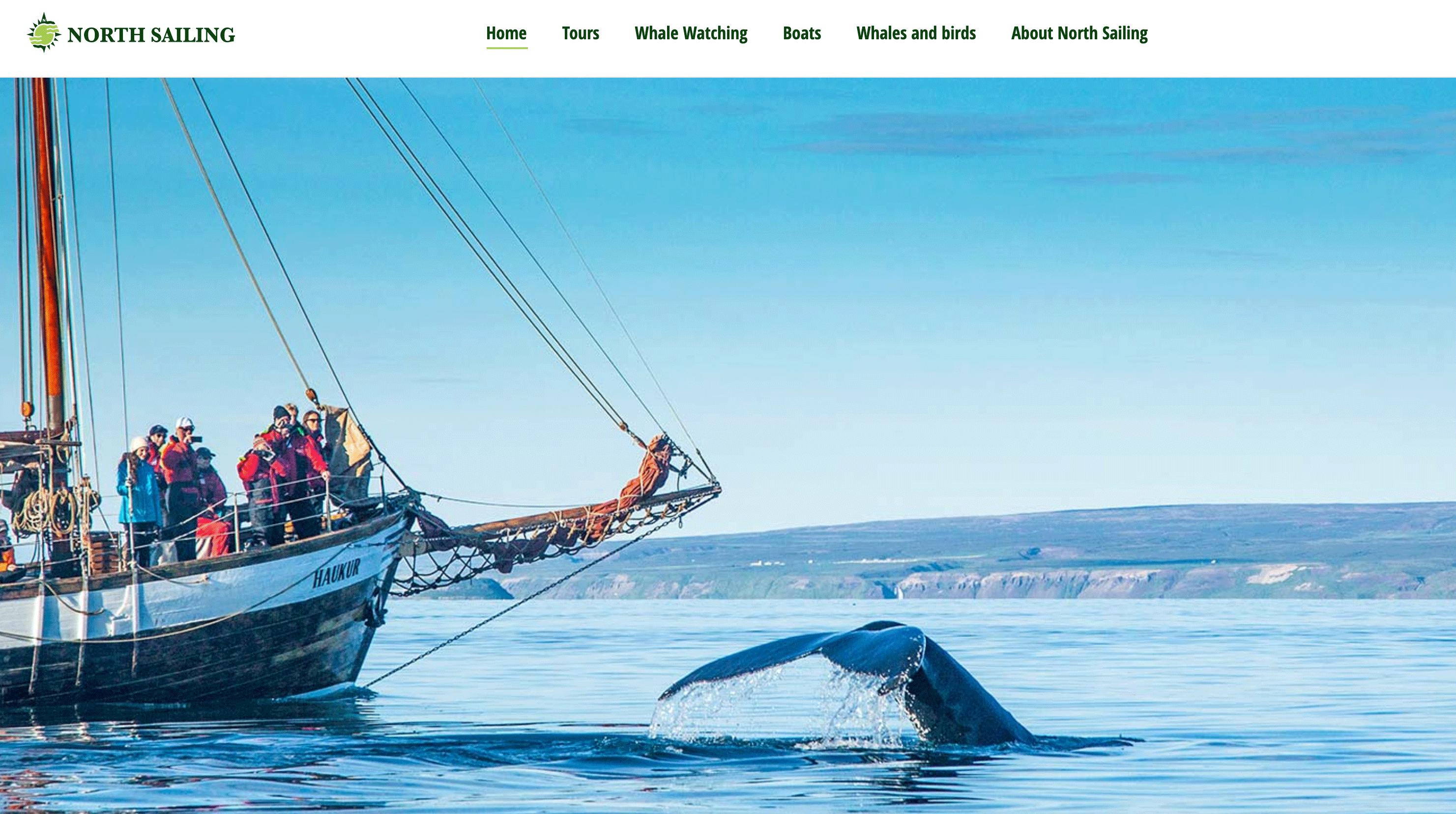 在这家网站上订购的观鲸之旅看到了地球史上最大的动物--蓝鲸